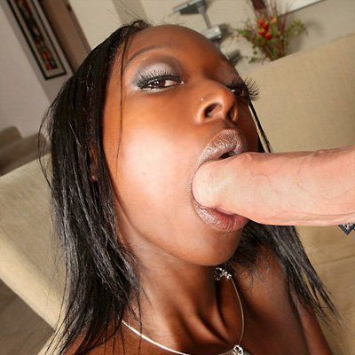 Black girl sucking white cock daily